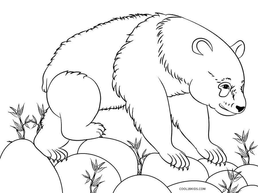 giant panda coloring pages printable giant panda is eating bamboo coloring page panda giant printable pages coloring panda
