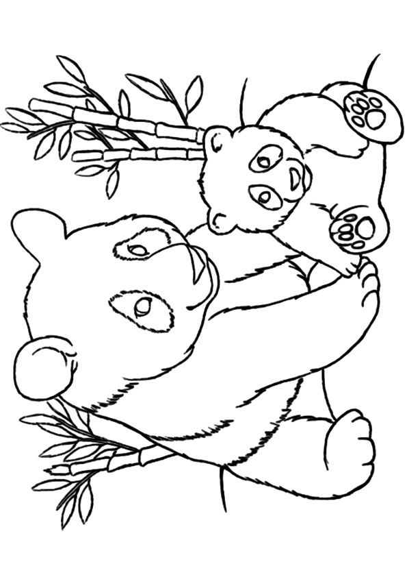 giant panda coloring pages printable pincoloringcom bear coloring pages panda coloring pages printable panda giant coloring