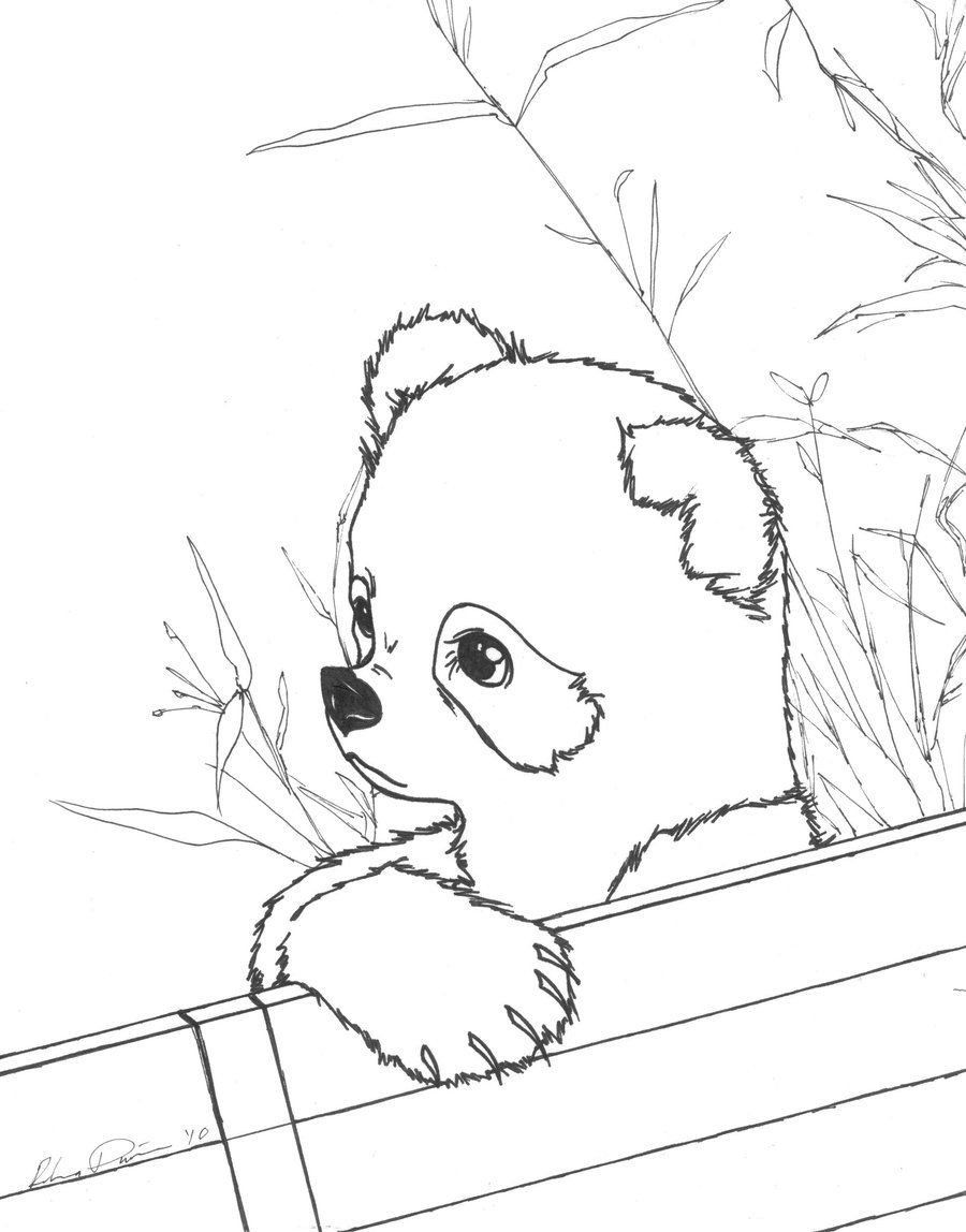 giant panda coloring pages printable rare giant panda coloring page rare giant panda coloring panda pages coloring printable giant