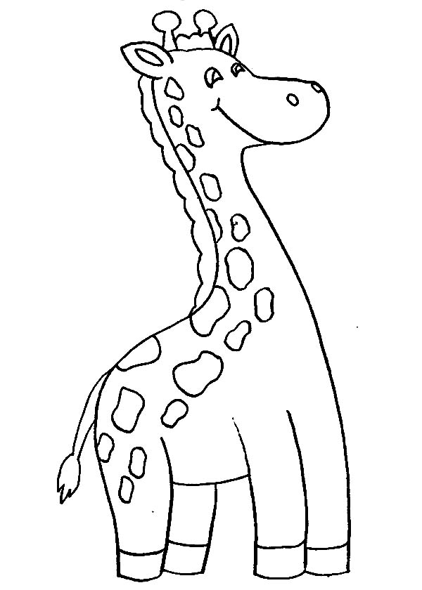 giraffe face coloring pages cute baby giraffe drawing at getdrawings free download face giraffe pages coloring