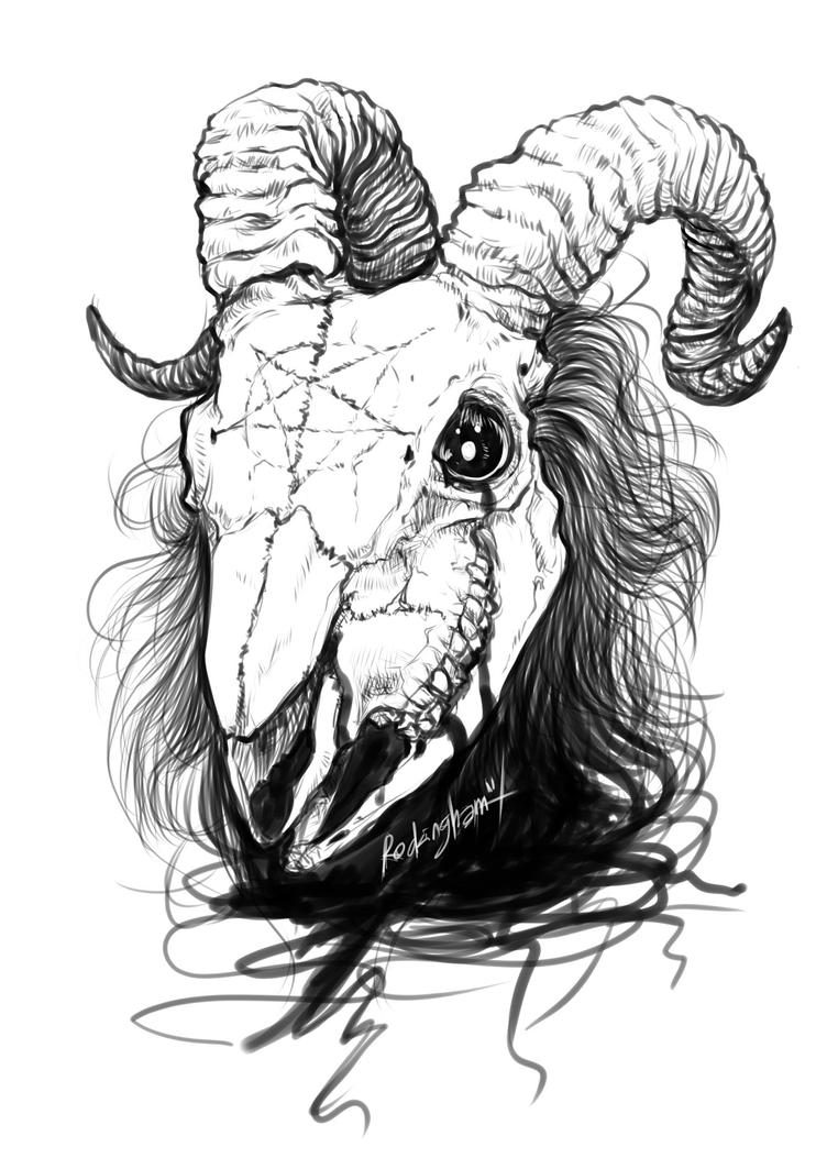 goat head drawing goat drawing images at getdrawings free download goat head drawing