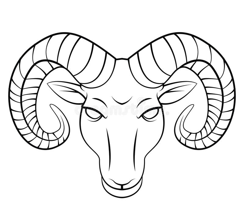 goat head drawing mountain goat head drawing free download on clipartmag goat drawing head