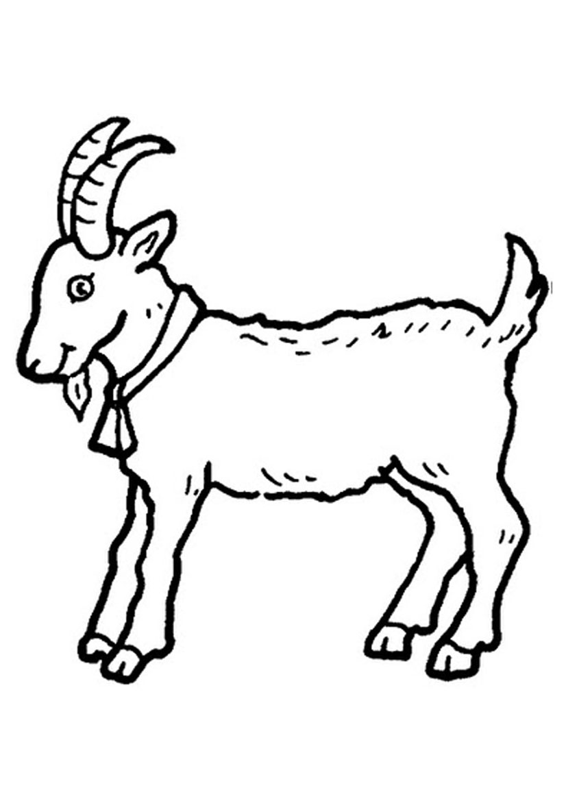 goat to color 19 animal goats printable coloring sheet goat color to