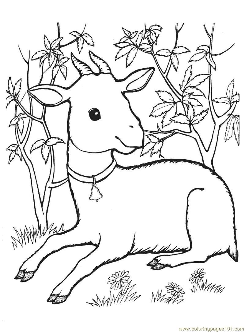 goat to color bleating goats 18 goat coloring pages and pictures print to goat color