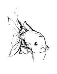 goldfish drawings 7 best images about how to draw a goldfish on pinterest drawings goldfish