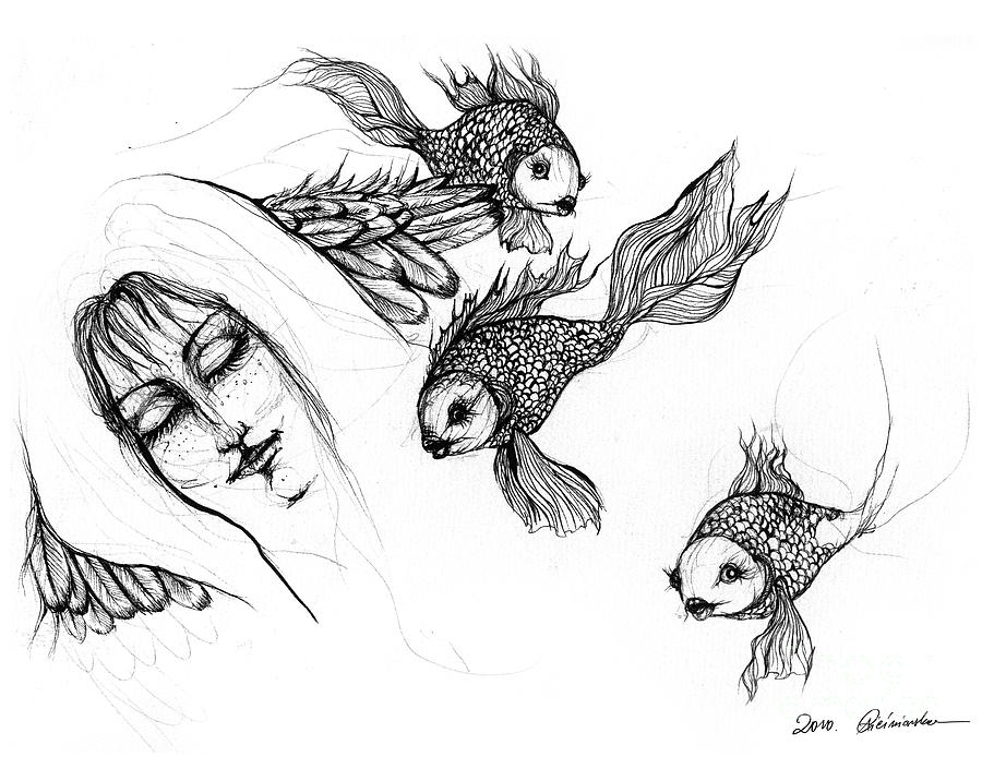 goldfish drawings how to draw a gold fish goldfish drawings