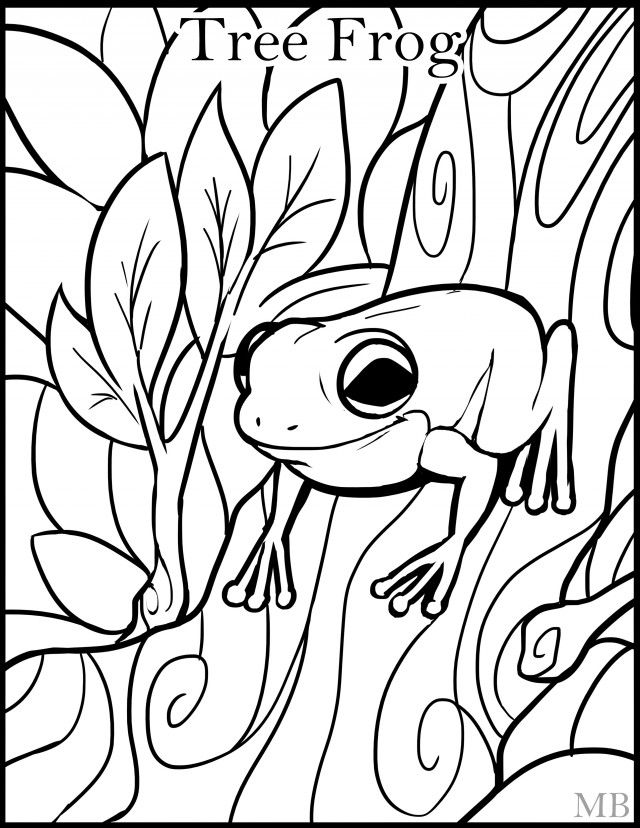 green tree frog coloring page cartoon frog drawing at getdrawings free download frog tree green coloring page