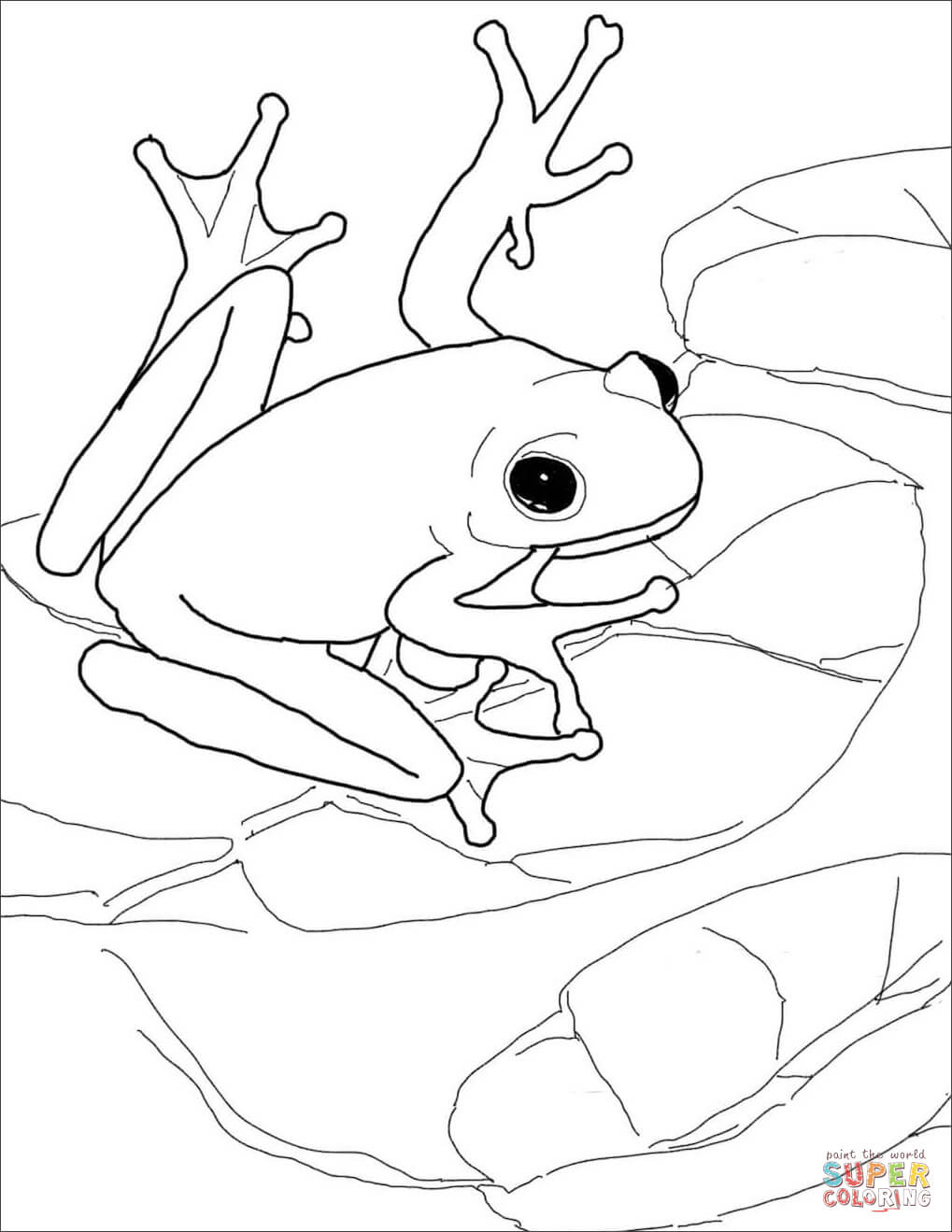 Green tree frog coloring page