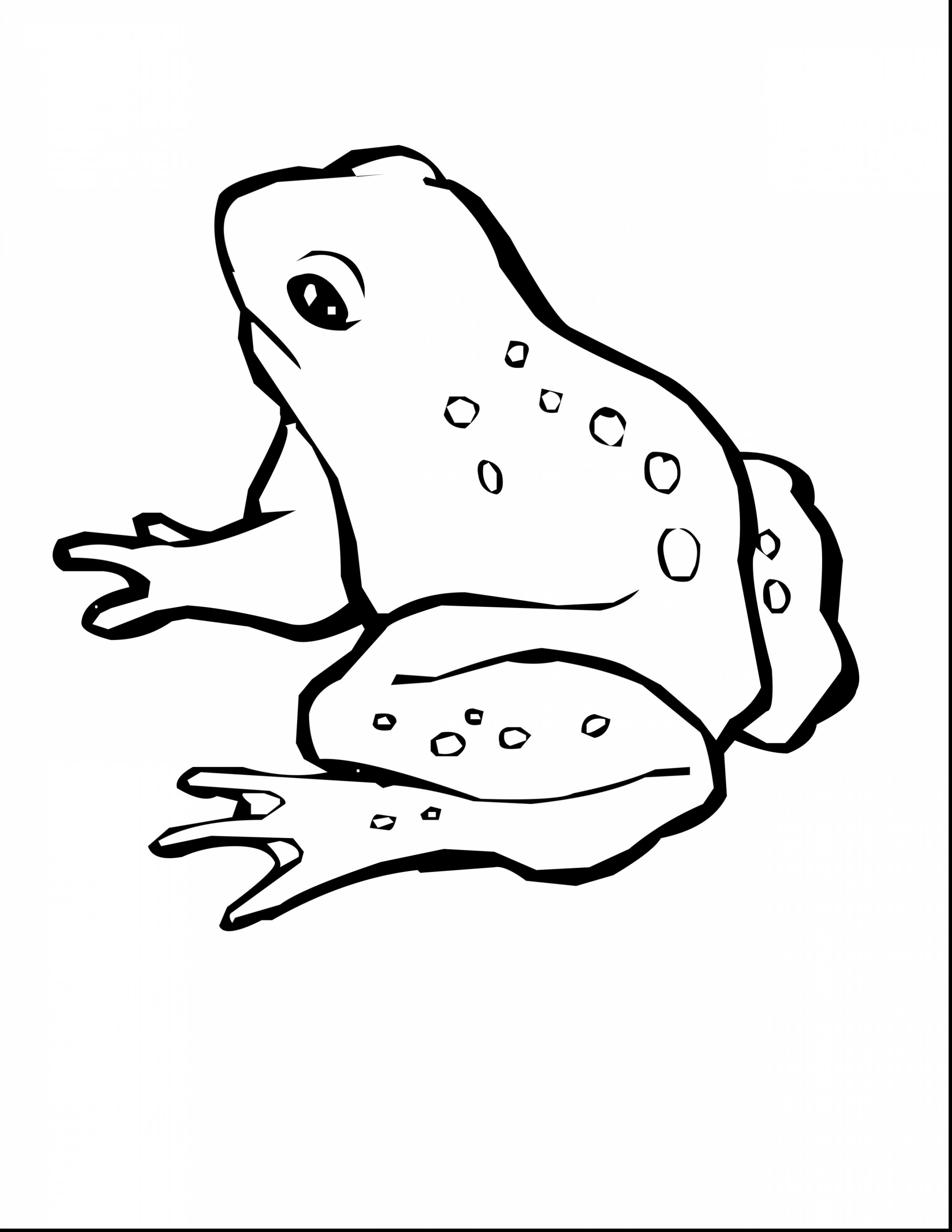 green tree frog coloring page green tree frog drawing at getdrawings free download green tree coloring frog page