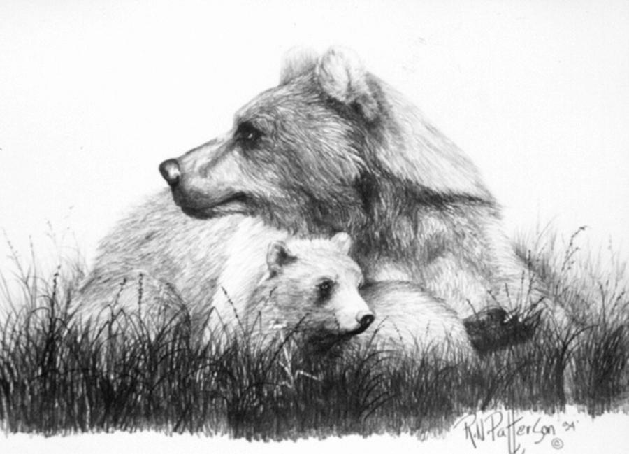 grizzly bear drawings fireflight photo grizzly bear and cubs pen and ink drawing grizzly drawings bear