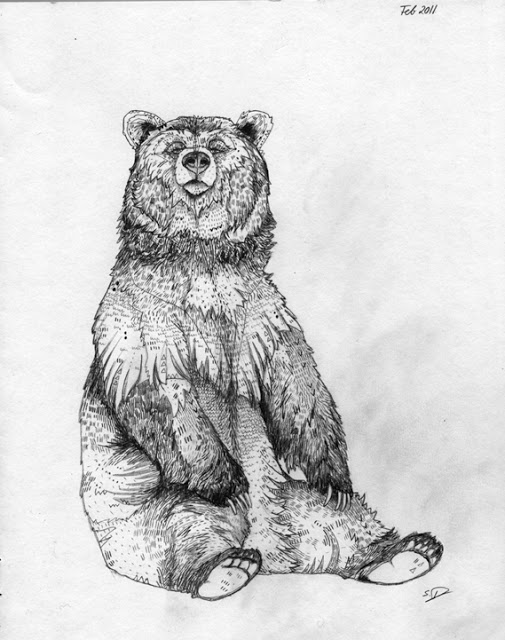 grizzly bear drawings grizzly bear drawing by george bumann grizzly bear drawings