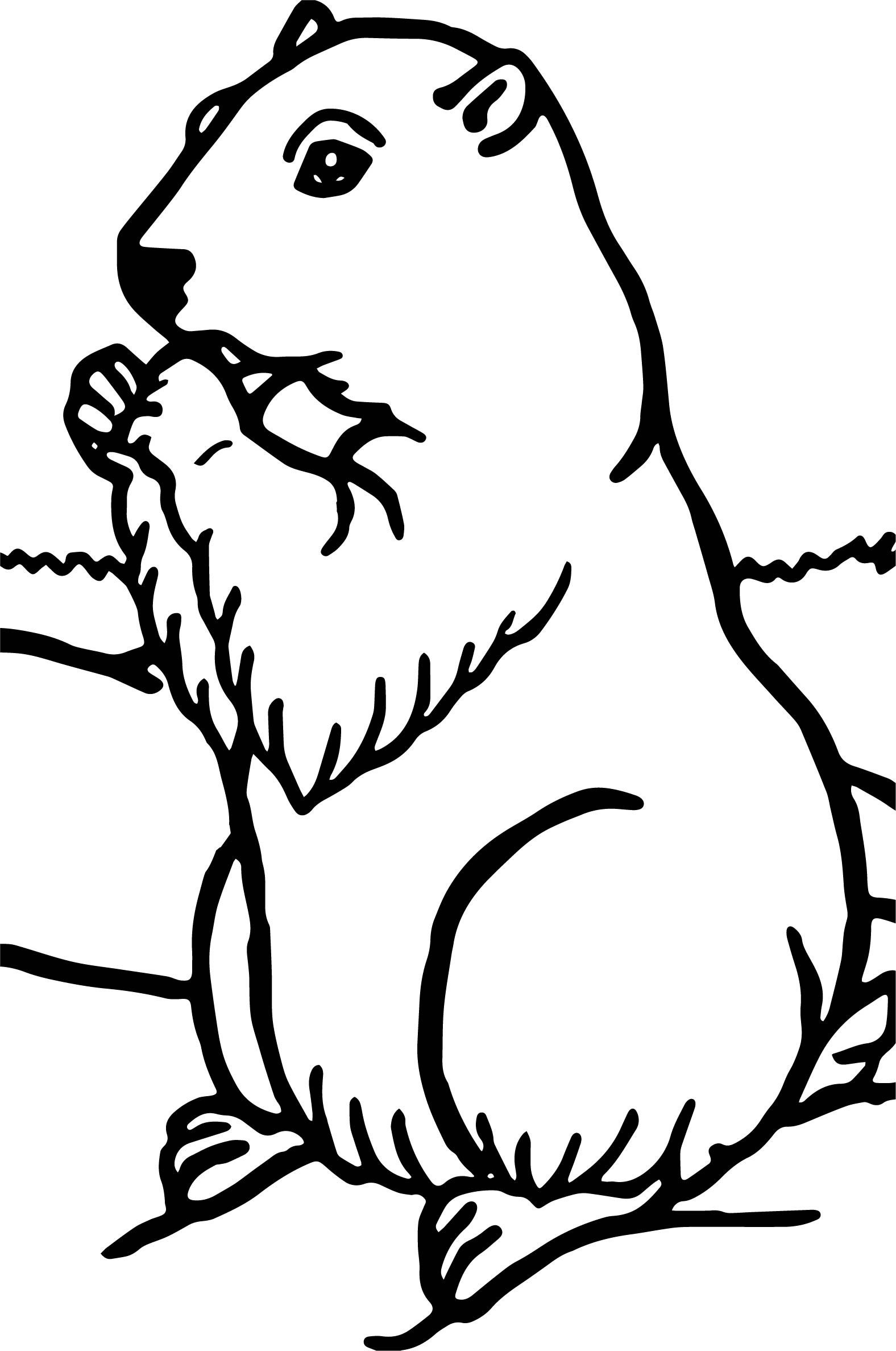 groundhog coloring page groundhog daychildrens stories poems carolyn39s coloring groundhog page