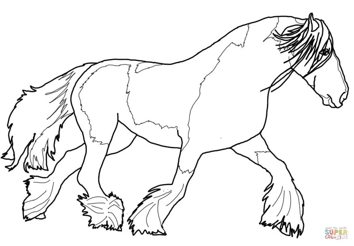 Gypsy vanner horse coloring pages