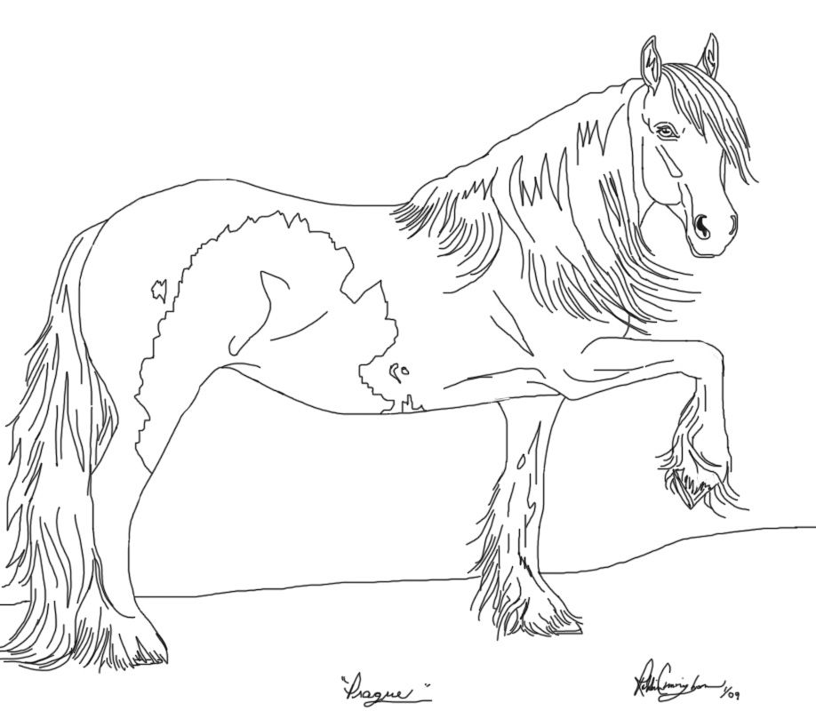 gypsy vanner horse coloring pages gypsy vanner horse coloring pages sketch coloring page gypsy horse coloring pages vanner