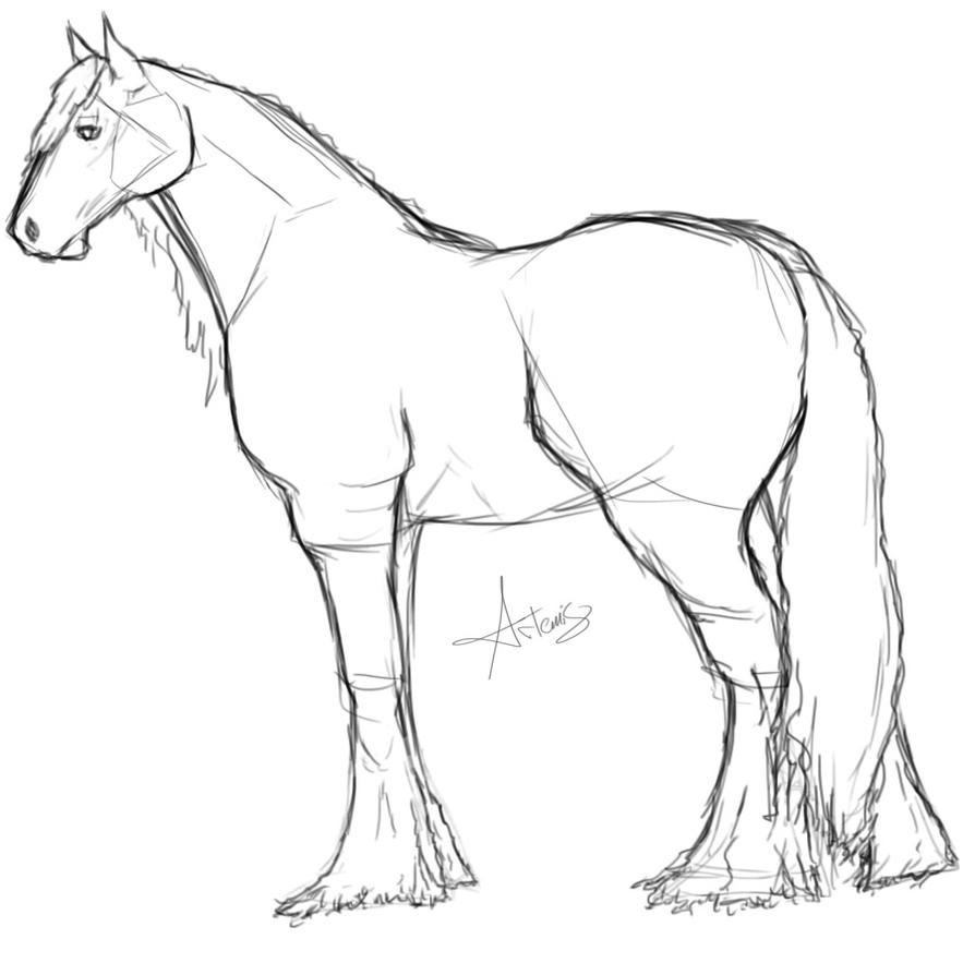 gypsy vanner horse coloring pages gypsy vanner sketch sketch coloring page vanner pages gypsy horse coloring