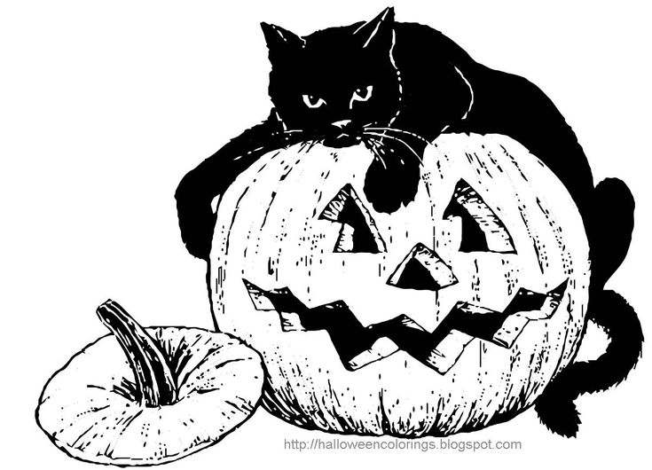 halloween black cat coloring pages black cat coloring pages halloween at getcoloringscom halloween coloring black pages cat
