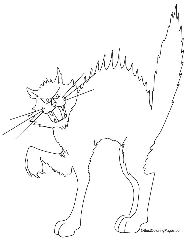 halloween black cat coloring pages halloween cat coloring pages getcoloringpagescom cat coloring halloween pages black
