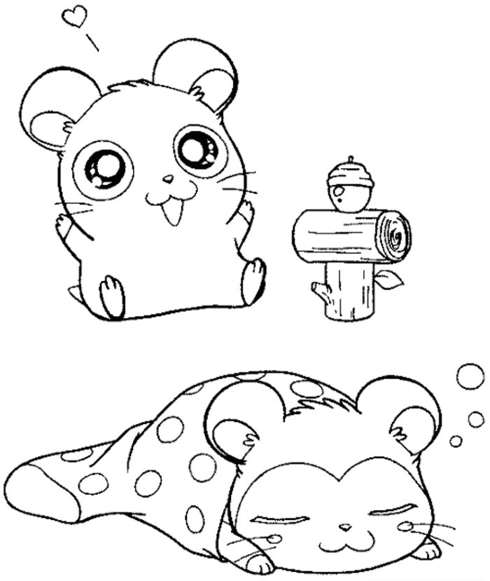 hamster coloring pages 14 best hamster coloring pages images on pinterest coloring pages hamster