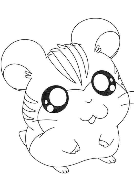 hamster coloring pages cute hamster coloring pages coloring home coloring pages hamster