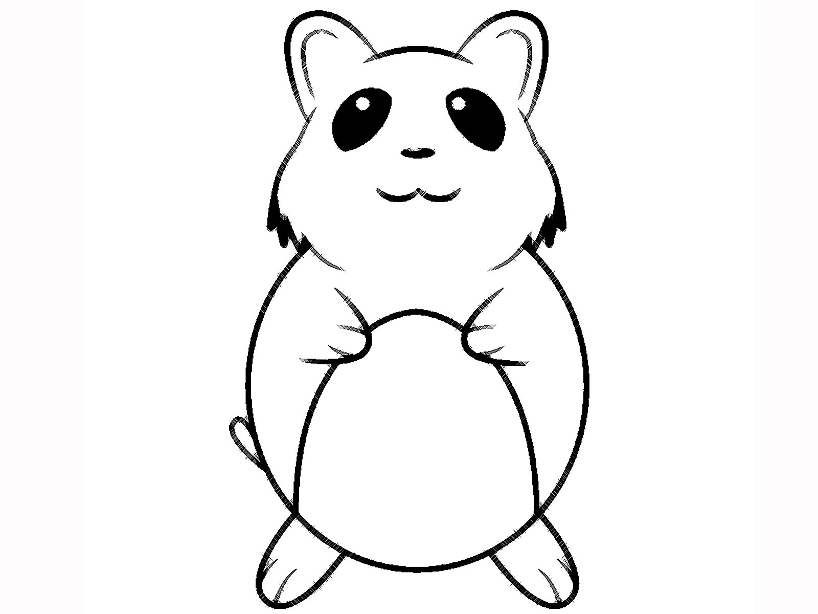 hamster coloring pages hamster facts hamster pages coloring