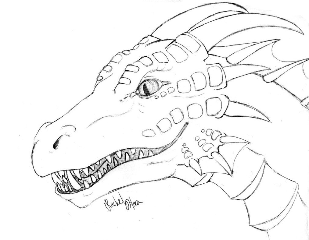harry potter dragon coloring pages dragon coloring pages realistic coloring pages dragon dragon potter coloring pages harry