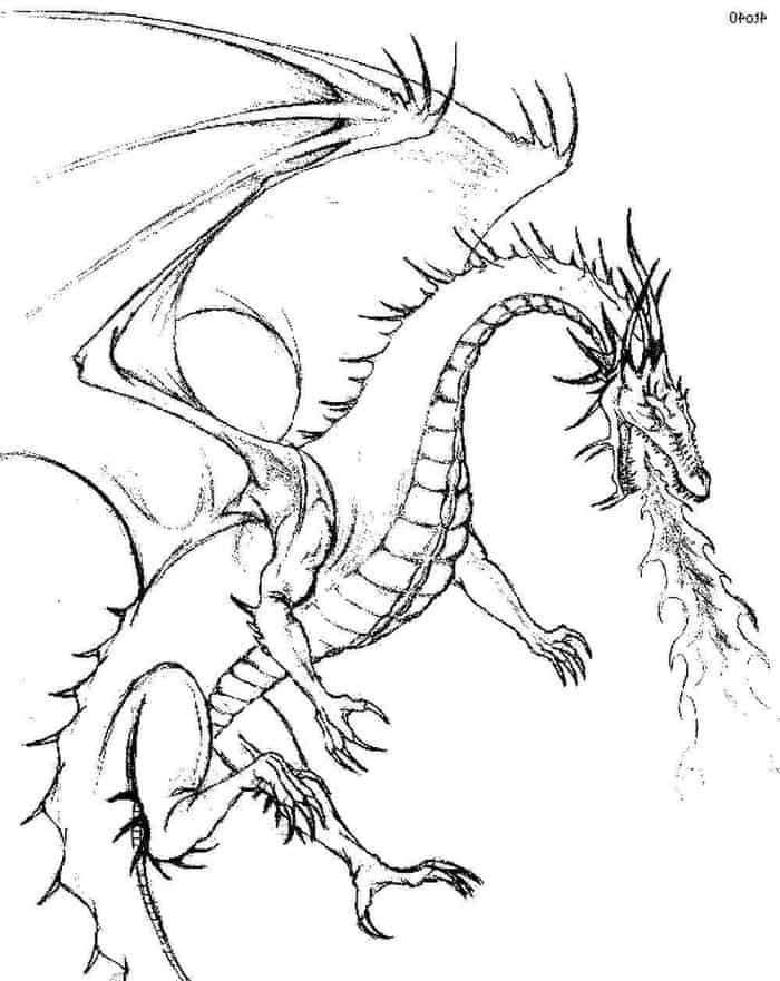 harry potter dragon coloring pages pin by pam konz on coloring pages harry potter coloring pages dragon potter coloring harry