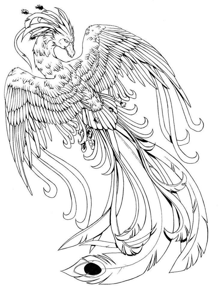 harry potter dragon coloring pages pin by toni hastings on graphics harry potter coloring coloring harry dragon potter pages