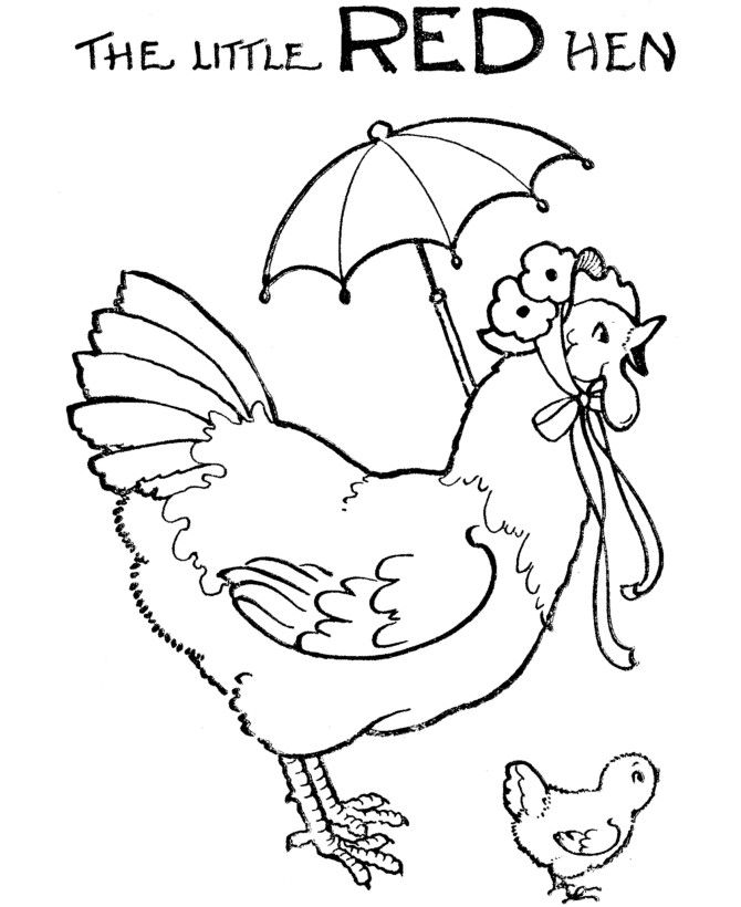 hen for coloring hen coloring pages coloring home coloring hen for