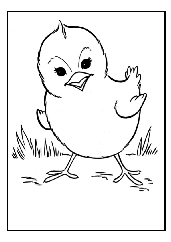 hen for coloring hen walking coloring page coloring sky hen coloring for