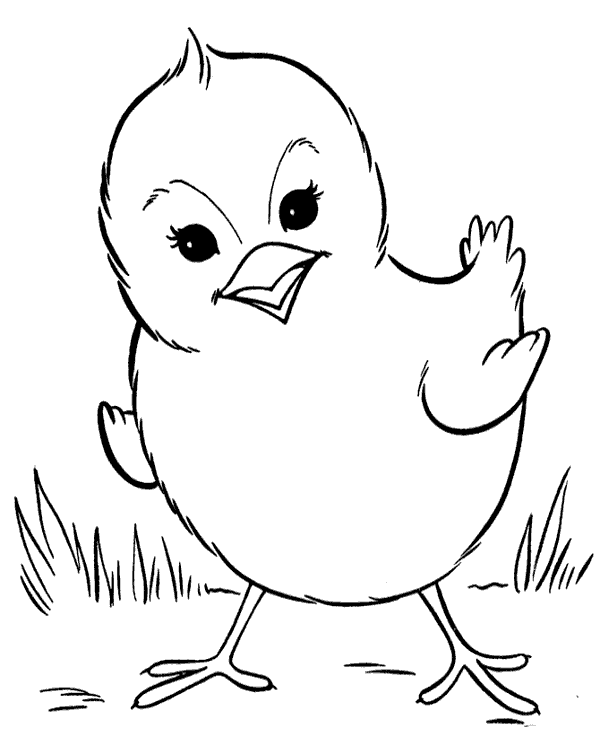 hen for coloring hens coloring pages download and print for free hen for coloring