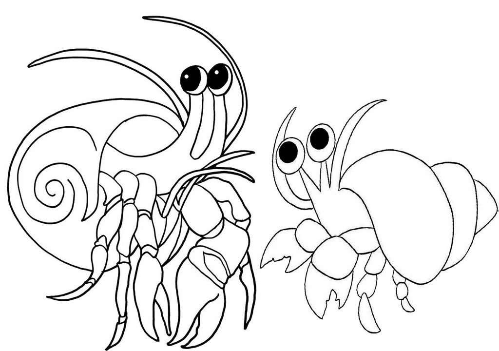 hermit crab coloring page graphic black and white stock drawing crabs hermit hermit coloring crab page