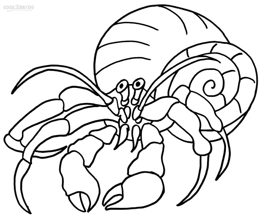 hermit crab coloring page hermit crab coloring page audio stories for kids free page coloring crab hermit