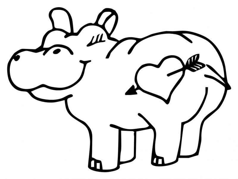 hippo outline drawing cute hippo coloring page free clip art outline hippo drawing