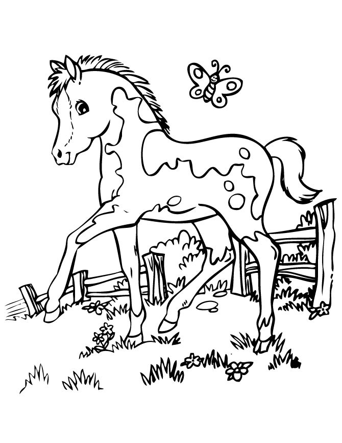 horse coloring pages for kids 39 best coloring pages images on pinterest coloring for coloring for kids pages horse
