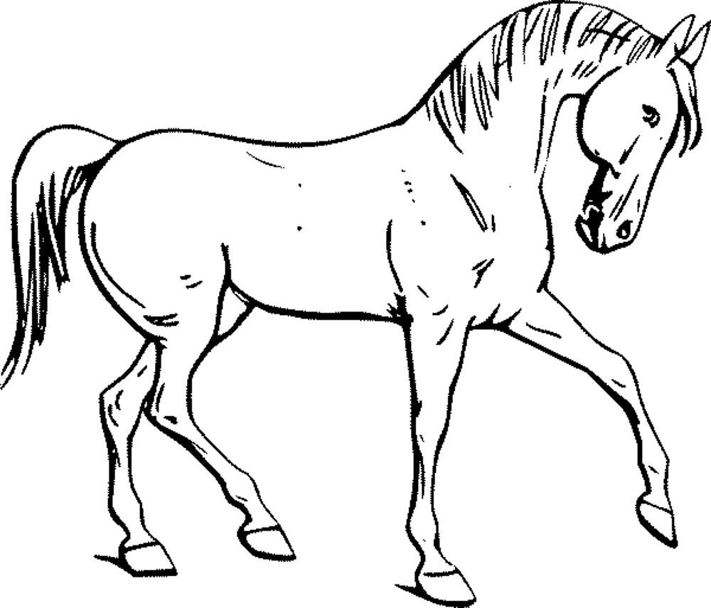 horse coloring pages for kids colour drawing free hd wallpapers horse for kids coloring horse coloring for kids pages
