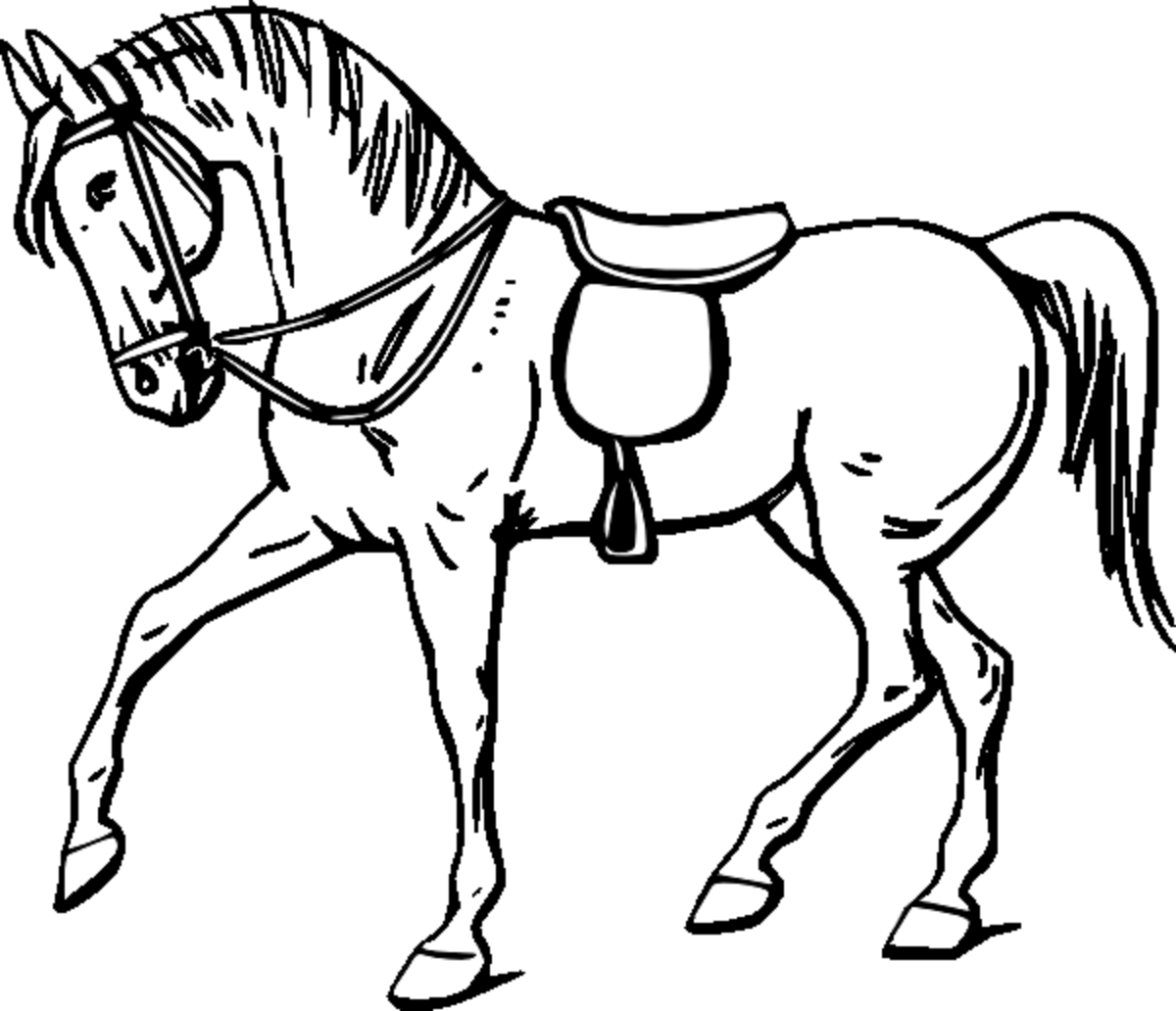 horse pics to color coloring town to color pics horse