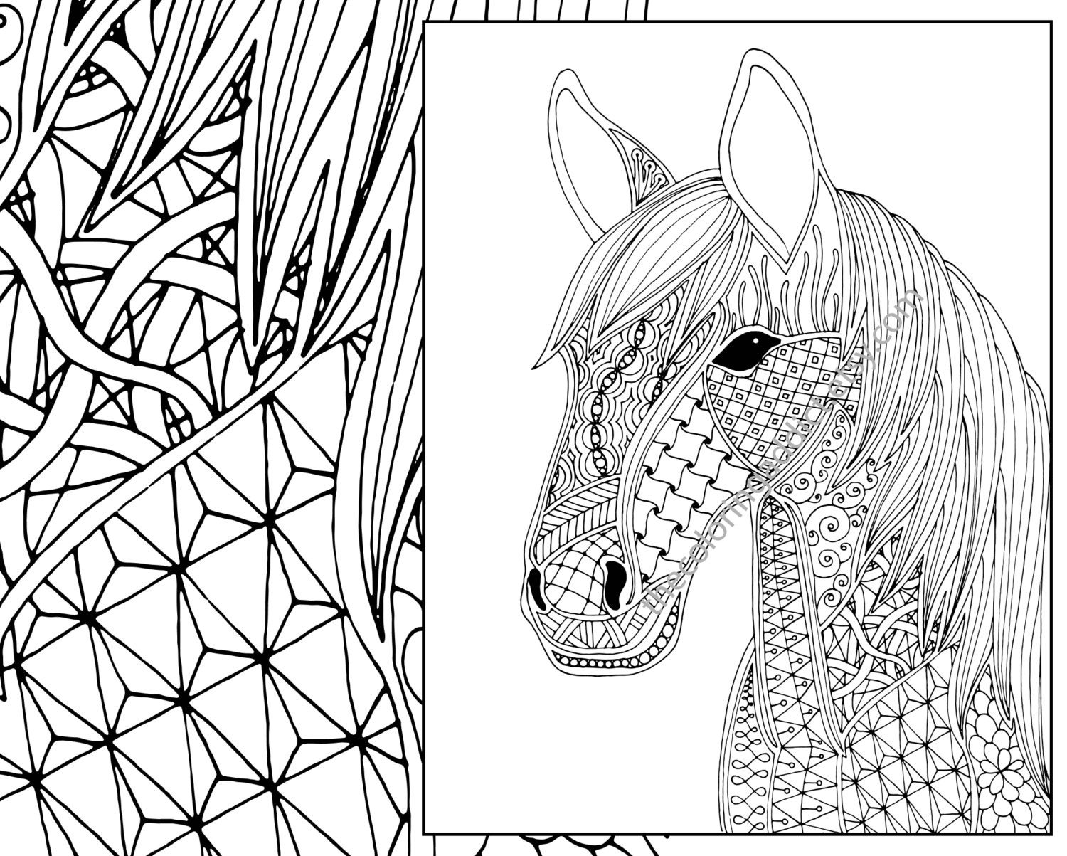 horse pics to color free horse coloring pages for adults kids cowgirl magazine horse pics color to