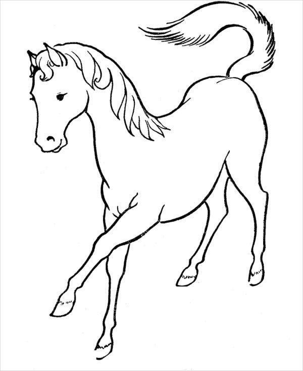 horse pics to color hand drawn horse for adult coloring page art therapy stock to color horse pics