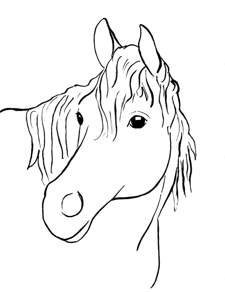 horse pics to color horse coloring pages team colors color pics horse to