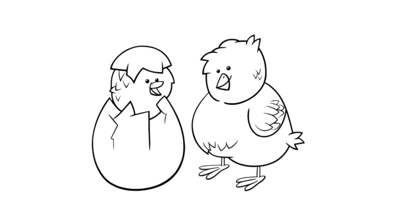 how to draw a baby chick how to draw chicks drawing of cute baby chicks youtube draw how baby to chick a