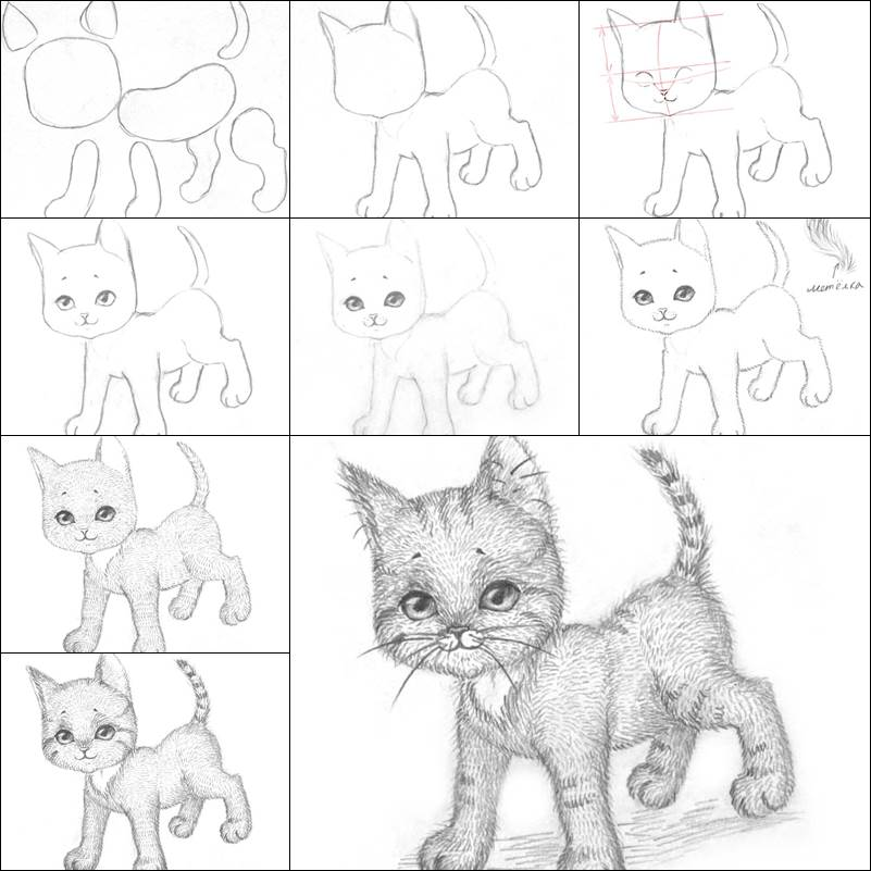 how to draw a baby kitten drawing lessons arcmelcom Страница 47 a draw kitten baby how to
