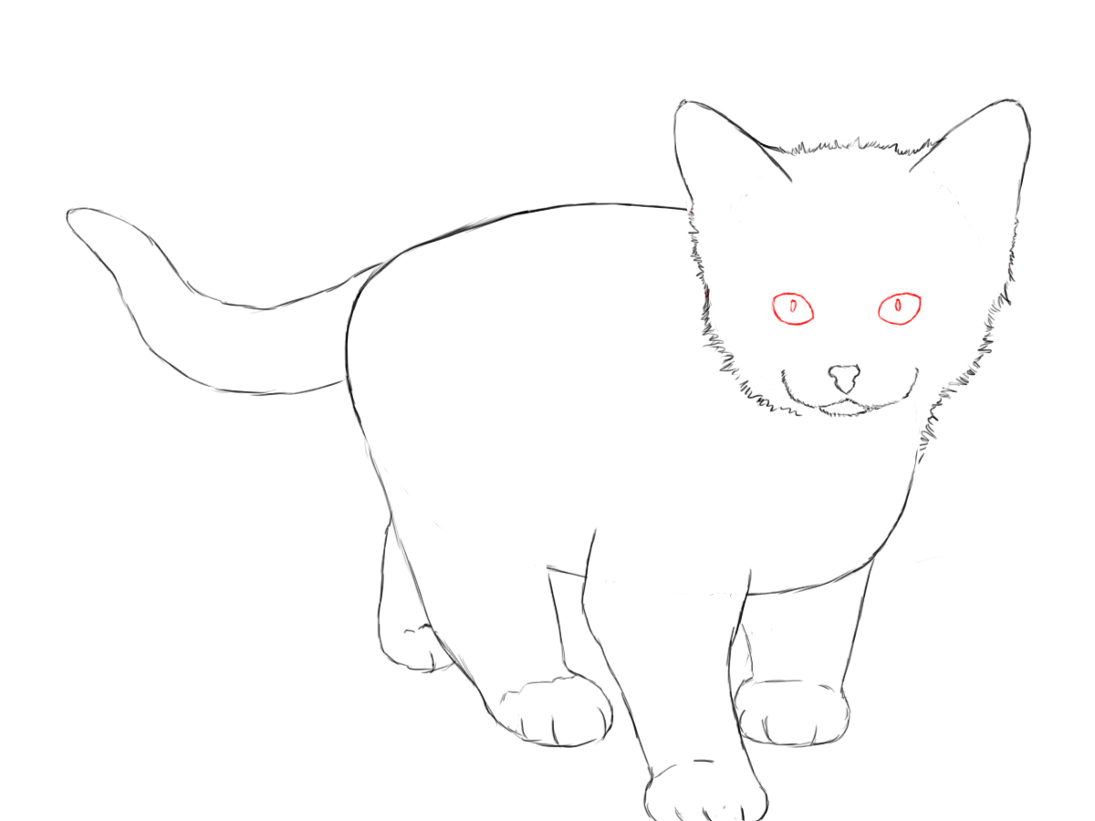 how to draw a baby kitten how to draw a kitten easily draw how a kitten to baby