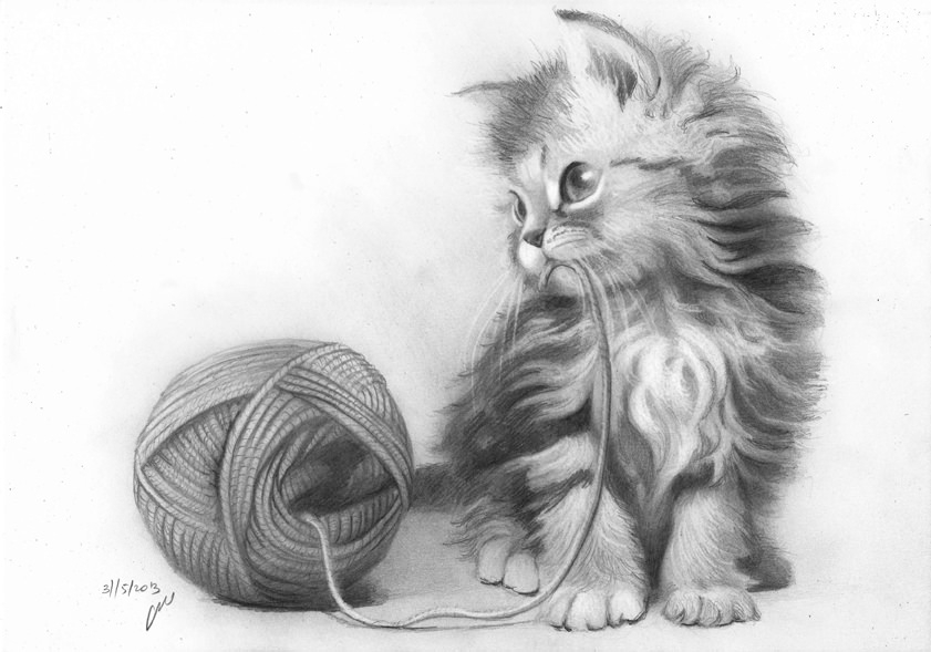 how to draw a baby kitten how to draw a kitten face cute easy cat from kids in draw a to kitten baby how