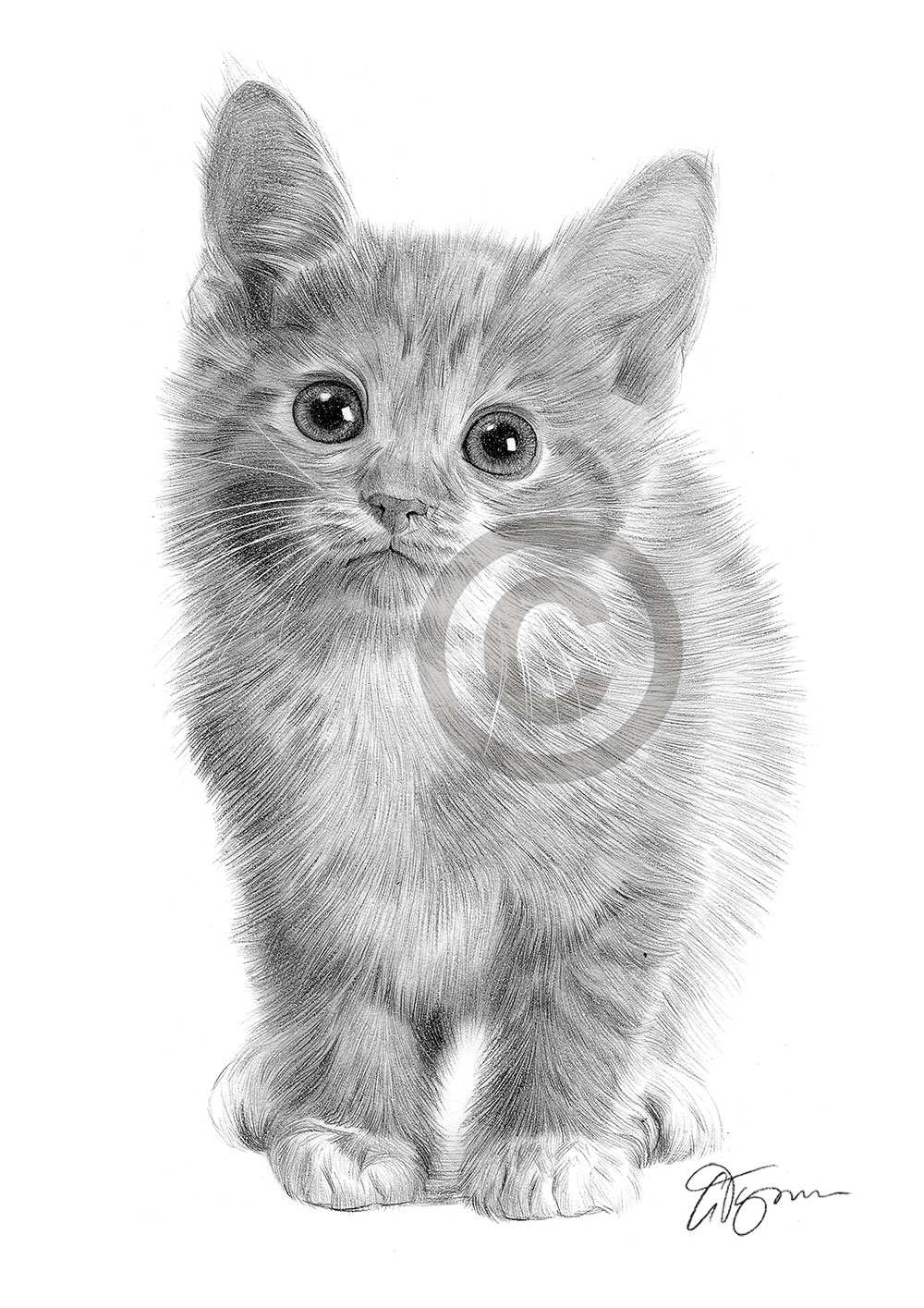 how to draw a baby kitten kittens sticker white nine cutenine cute white draw to a kitten how baby