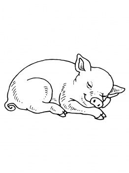 how to draw a baby pig cute black and white pig pig crafts stuffed animal how baby a pig to draw