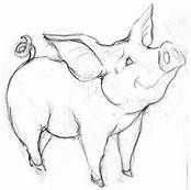 how to draw a baby pig how to draw a cartoon pig by dawn animal coloring pages a to draw baby pig how