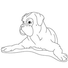 how to draw a boxer step by step 1000 images about cartoon dogs on pinterest how to draw how step a boxer to step by draw