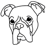 how to draw a boxer step by step a5 boxer drawing boxer dogs art dog sketch animal drawings boxer by draw step a how step to