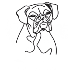 how to draw a boxer step by step how to draw a boxer dog draw to step boxer a by how step