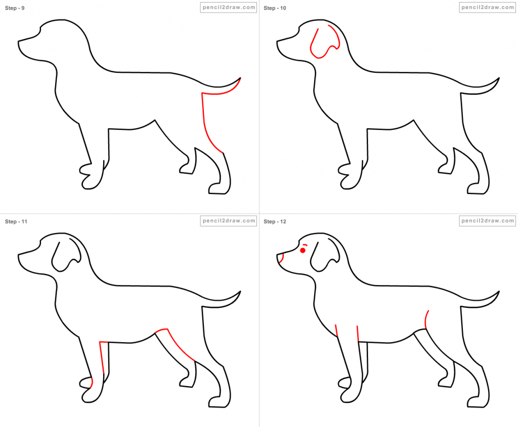 how to draw a boxer step by step how to draw a boxer step by step easy animals 2 draw step boxer a step how to by draw